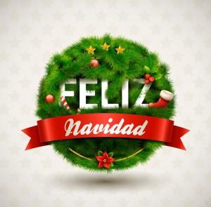 Feliz Navidad Forever wreath